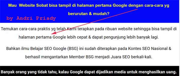 review belajar seo google di rwp2